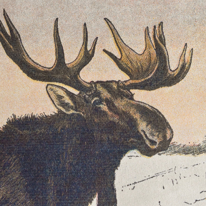 P. Mahler Chromolithograph of Moose Bull and Moose Cow in Snow in Canvas Wall Chart