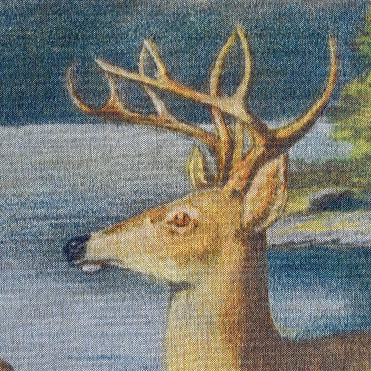 Oliver Kemp Adirondack Deer Painting Wall Chart featured in Forest Fish & Game Commission New York