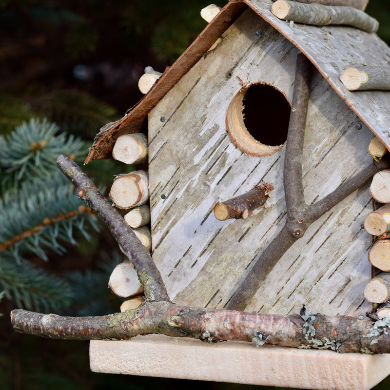 Locally-Handcrafted White Birch Birdhouse