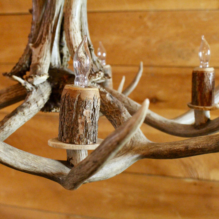 mule antler chandelier 9 lights