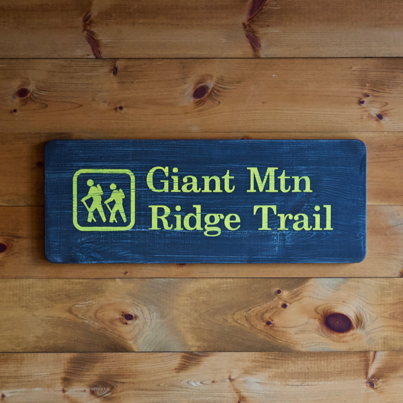 Hand Painted New York State Conservation Department Giant Mountain Ridge Trail Sign