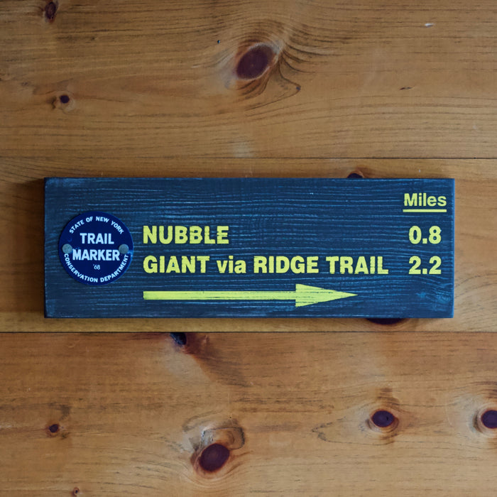 Hand Painted New York State Conservation Department Trail to Nubble Mountain Sign with Trail Marker