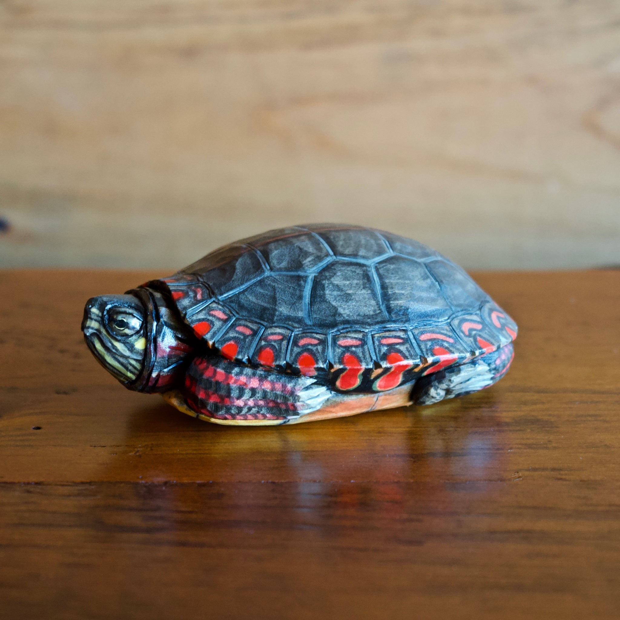 Eastern Painted Turtle Wood Carving by Allen Aardsma