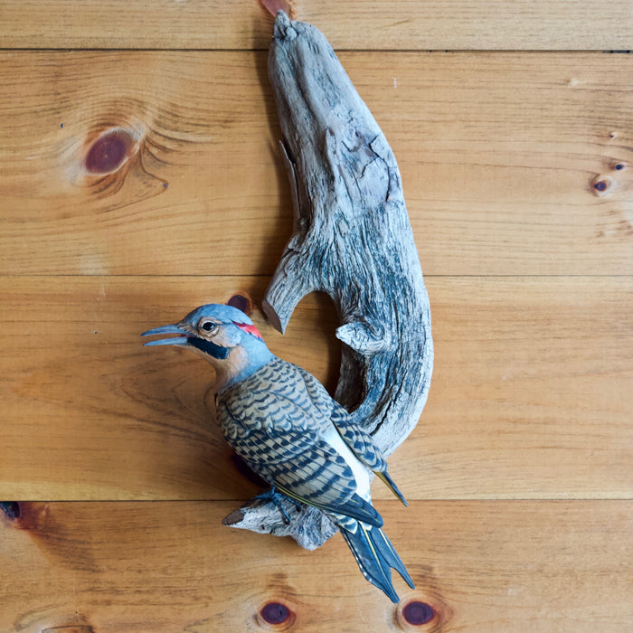 Wall Carving of Yellow-shafted Flicker Bird by Allen Aardsma