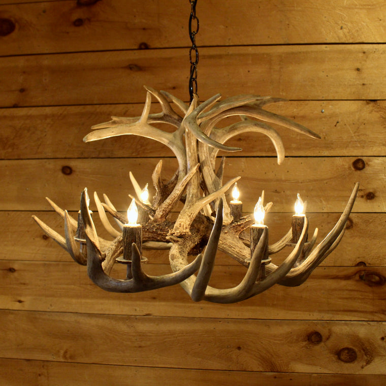 White Tail Antler Chandelier (6 Light)