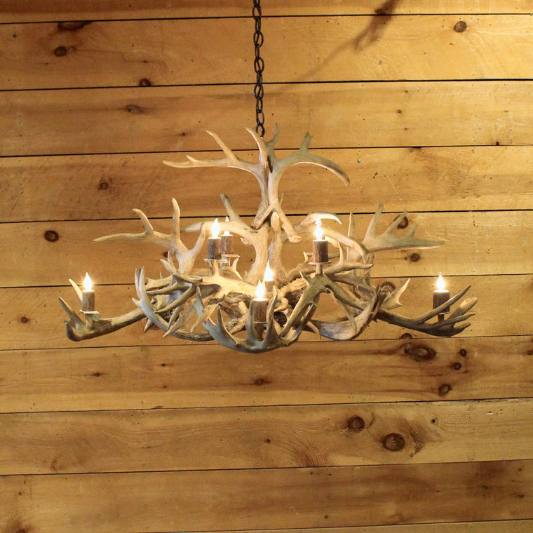 Oval Whitetail Antler Chandelier | 6-Light