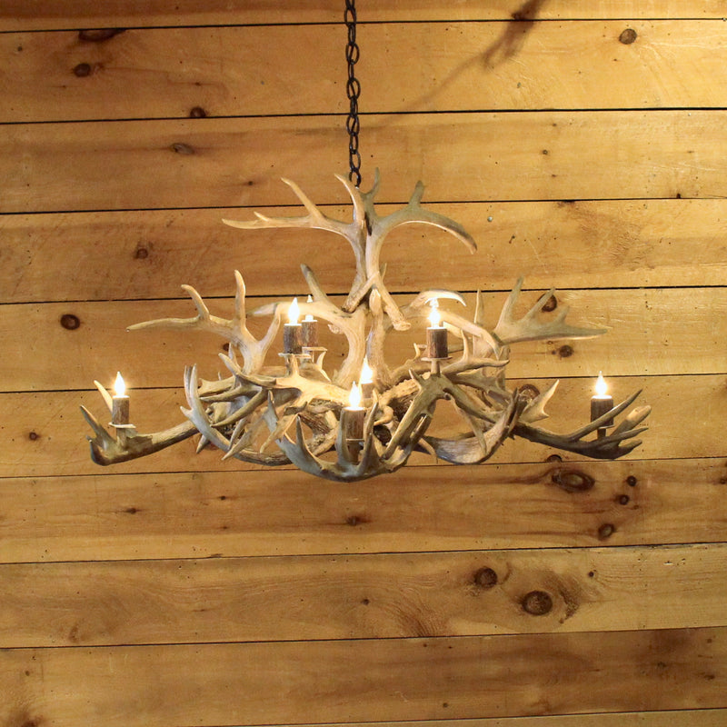 Rustic white antler chandelier oval