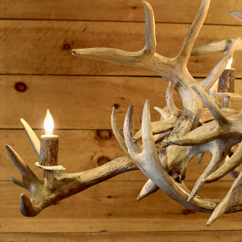 rustic whitetail antler chandelier oval