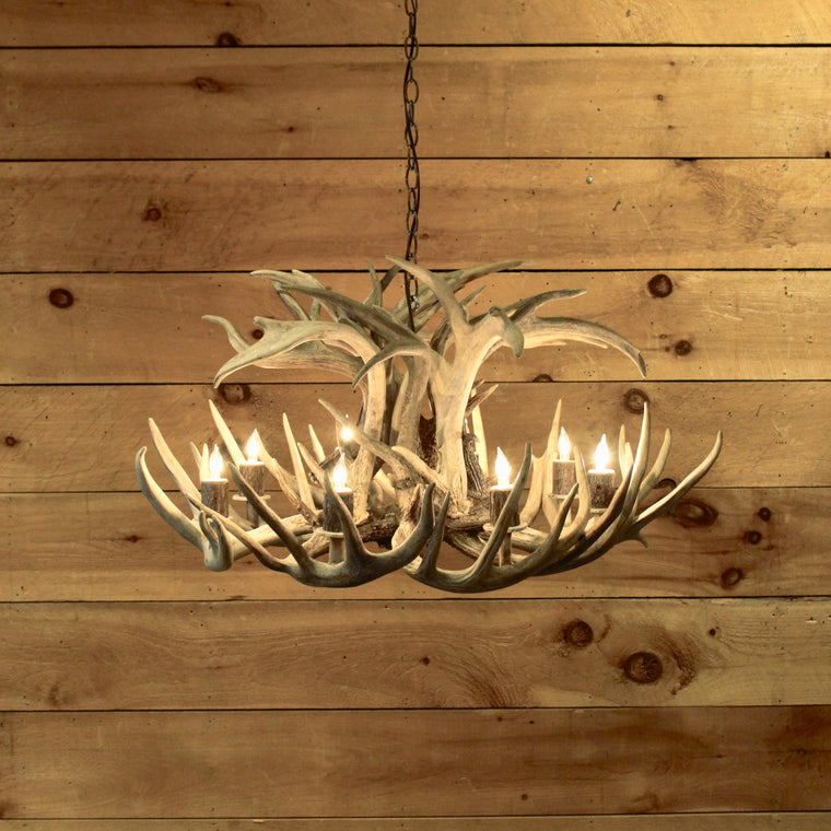 Round Whitetail Antler Chandelier | 8-Light