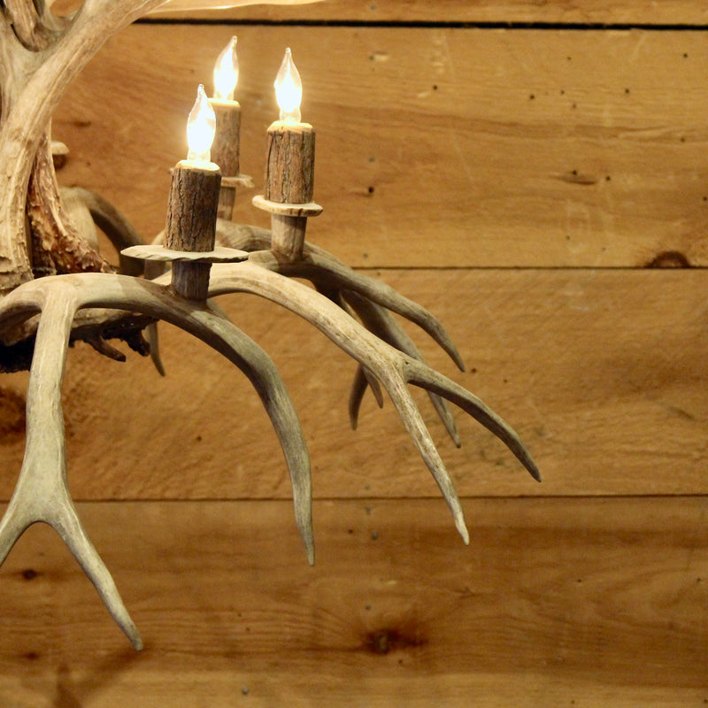 Rustic inverted whitetail antler chandelier