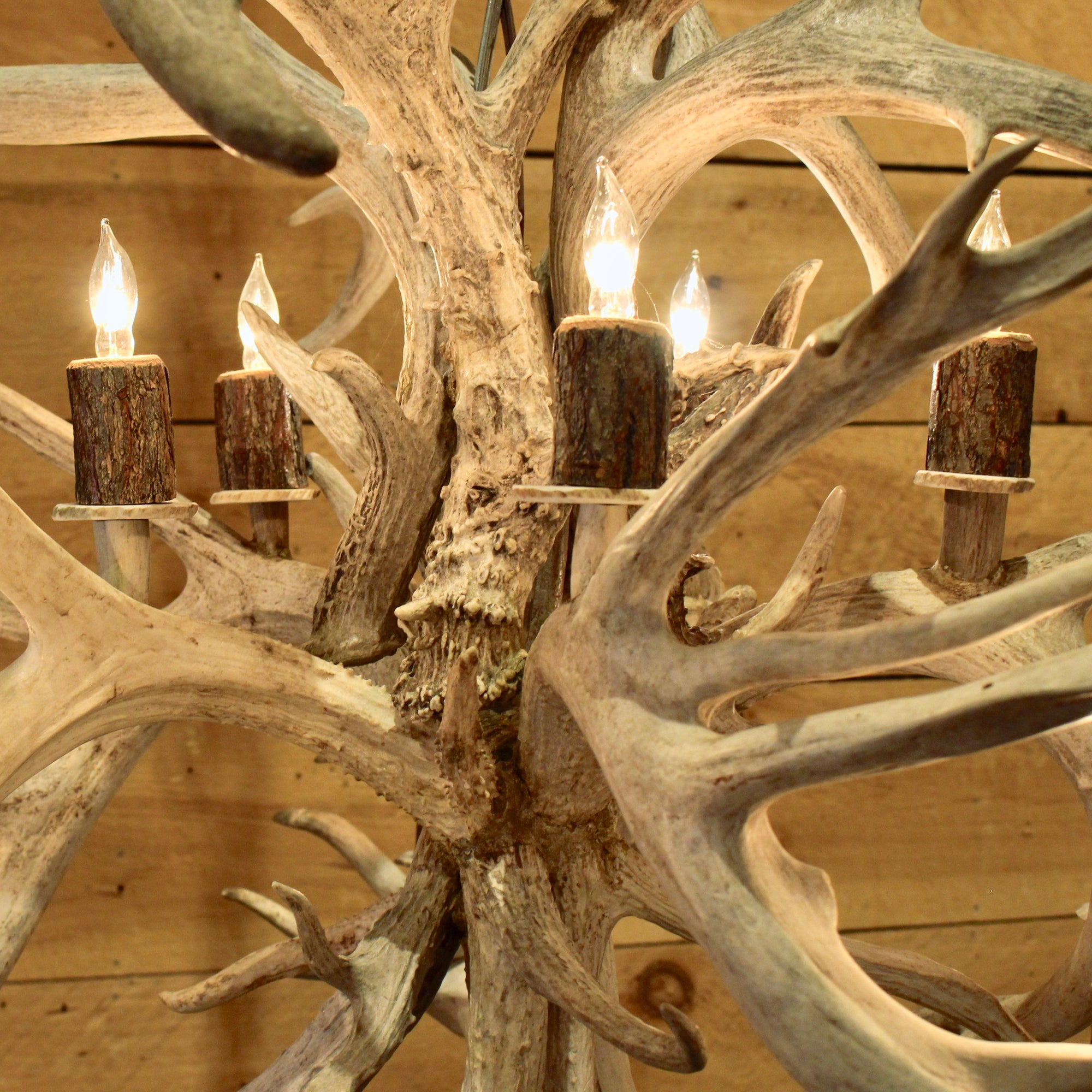 White tail antler globe chandelier rustic adirondack lighting rustic non typical whitetail antler chandelier aloadofball Gallery
