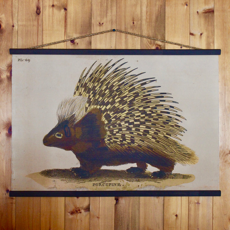 Porcupine Wall Chart