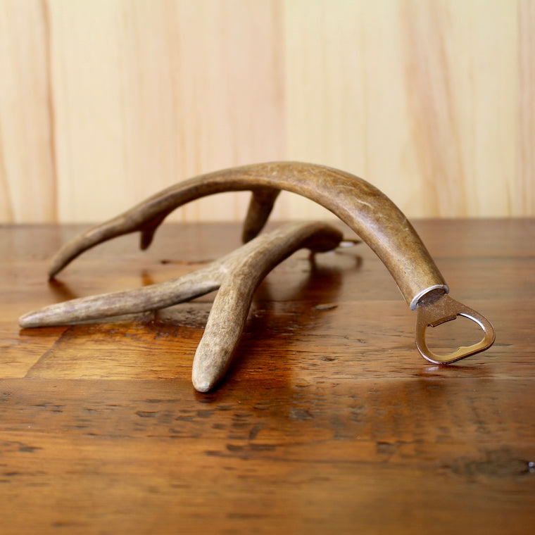 Shed Antler Bottle Opener