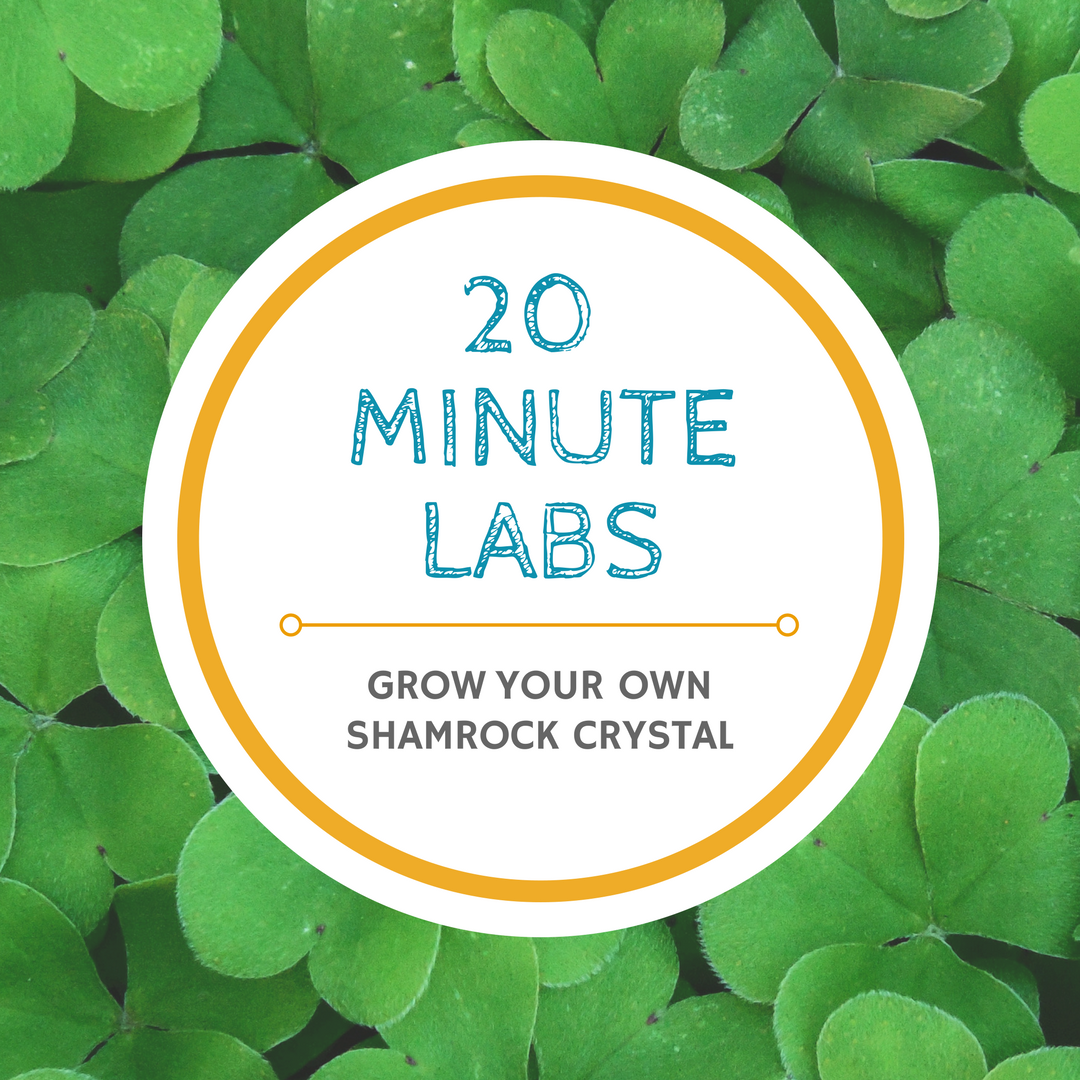 20 minute lab logo | Yellow Scope blog