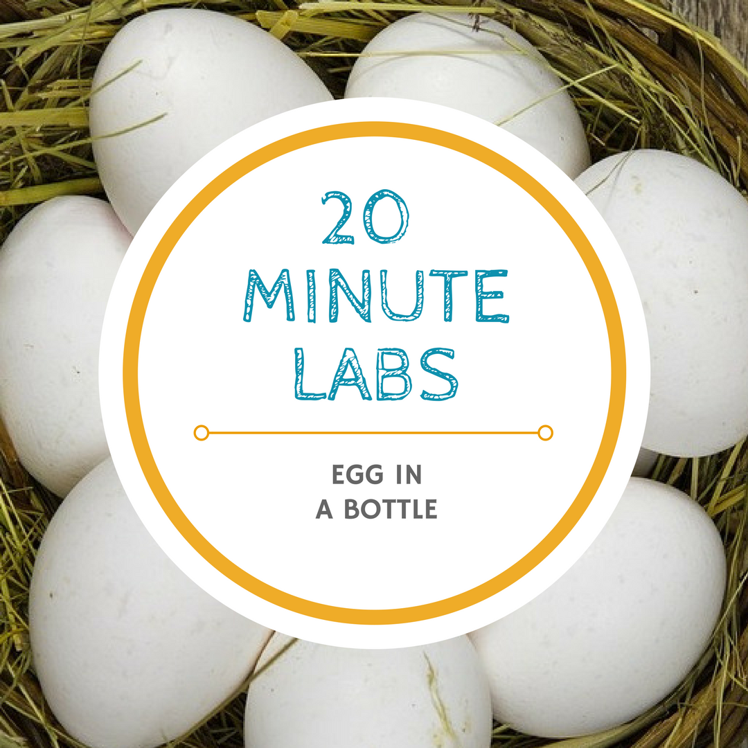 20 minute lab egg logo | Yellow Scope blog
