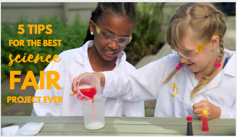 yellow scope science fair feature image