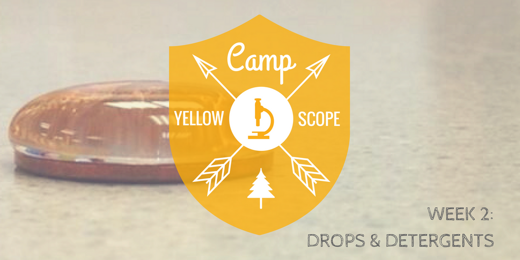 Drops & Detergents | Camp Yellow Scope