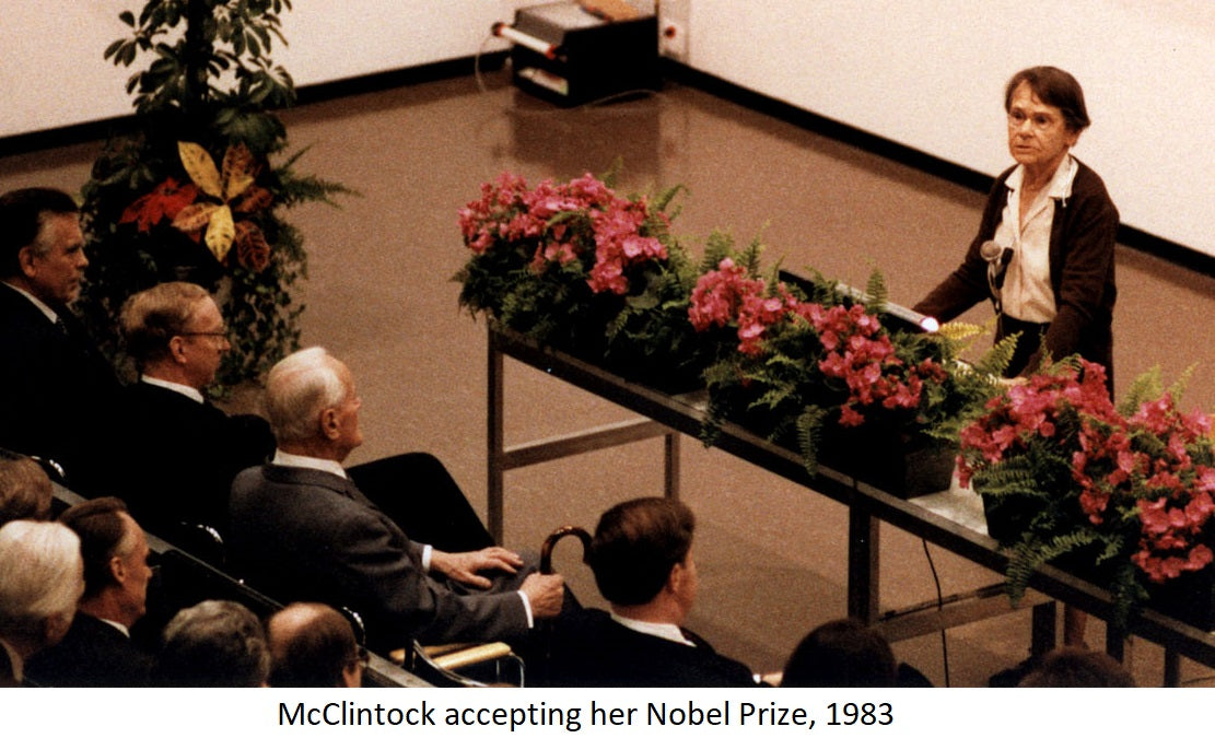 barbara mcclintock | Yellow Scope blog