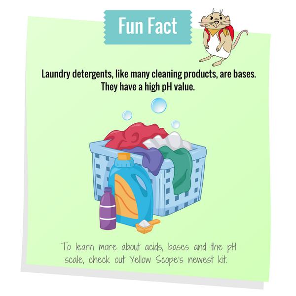 Fun fact | Camp Yellow Scope