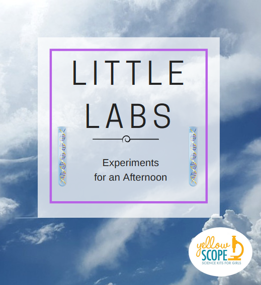 little labs logo