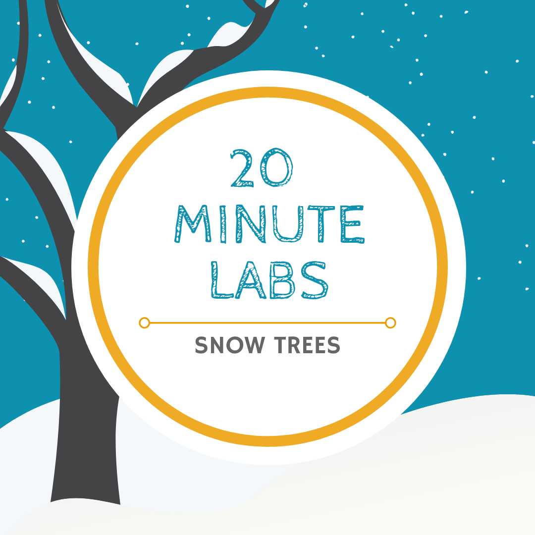20 Minute Labs salt tree logo | Yellow Scope