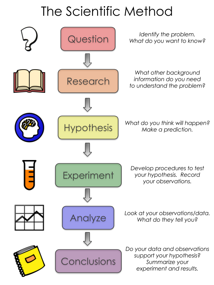Scientific method | Yellow Scope