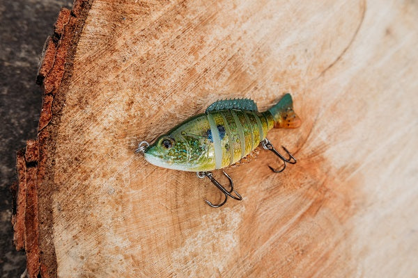 Huge Jointed Swimbait from the RLM Elite Subscription Box from Simple Fishing