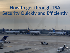 How to get through TSA Airport Security Quickly and Efficiently (especially when preparing for SHOT Show)