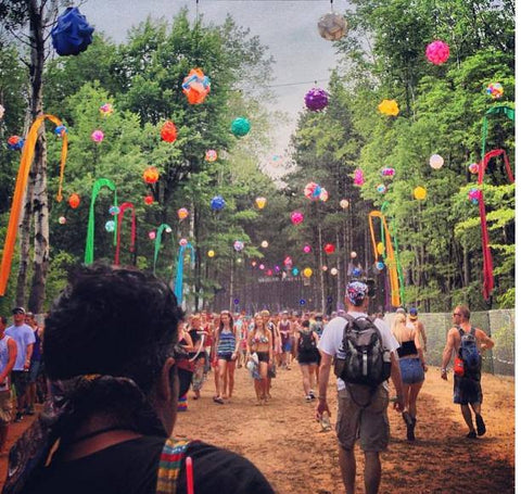 Electric Forest 3