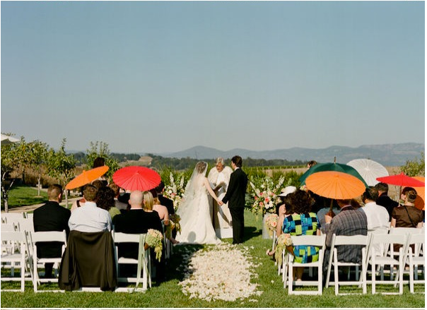 napa wedding with mantilla