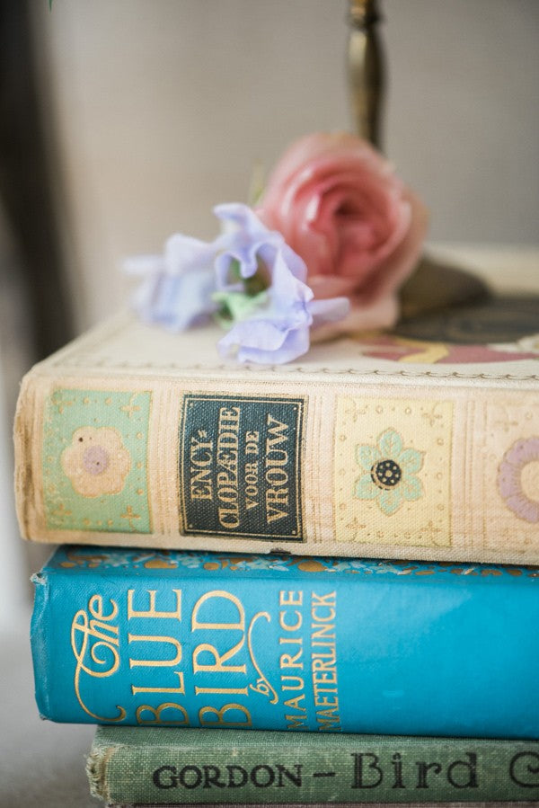 boudior bridal photo shoot vintage books