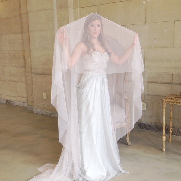 cathedral length veil in blush raw edge