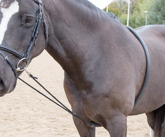 470 soft lunging aid