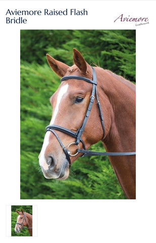5002 Aviemore Raised Flash Bridle