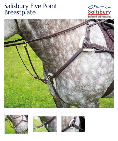 285 Salisbury Five Point Breastplate