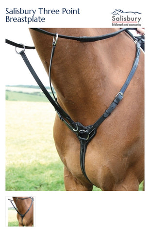 294 Salisbury Three Point Breastplate
