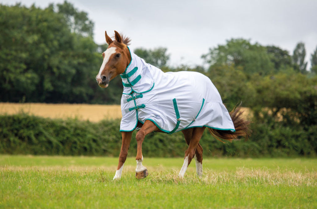 Shires tempest fly combo rug