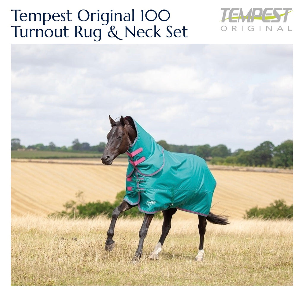 9374 Tempest Original 100g Turnout Rug & Neck Set green/pink