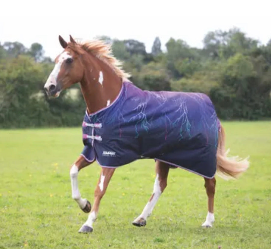 9330 shires tempest purple lightning lightweight turnout rug limited edition