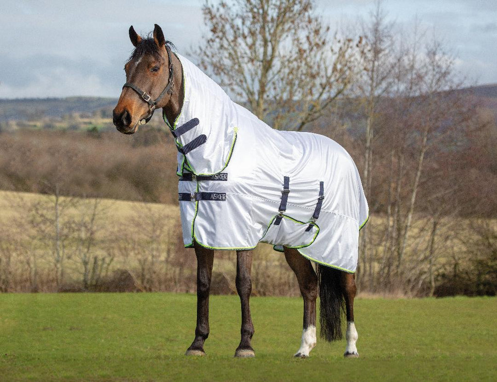 Asker fly Rug combo only £24.99