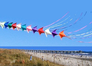Kites-25 styles and colors