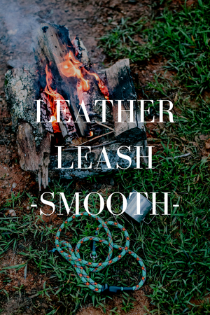 Leather Leash // Smooth