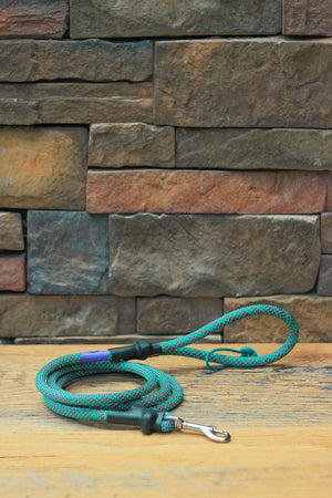 Climbing Rope Leash // TROPICAL FUSION