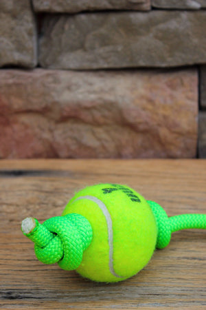 Rope & Tennis Ball Toy // NEON