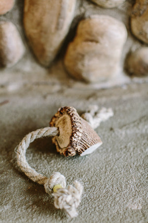 Small Antler & Hemp Rope Toy