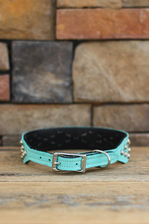 A Crystal Obsession Leather Dog Collar
