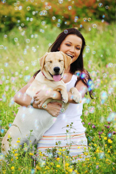 DIY Essential Oil Anti-Bug Spray for You and Your Dog