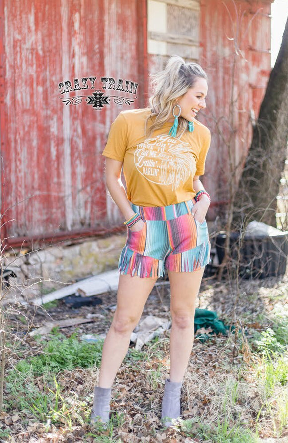 Serape Hacienda Shorts