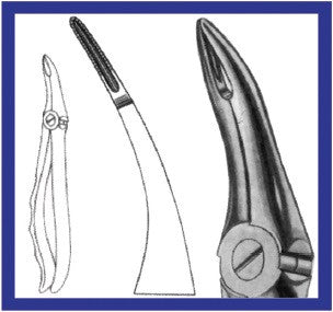 Extraction Forceps for Upper Roots (144 SP) Forceps - Blue & Green Inc.