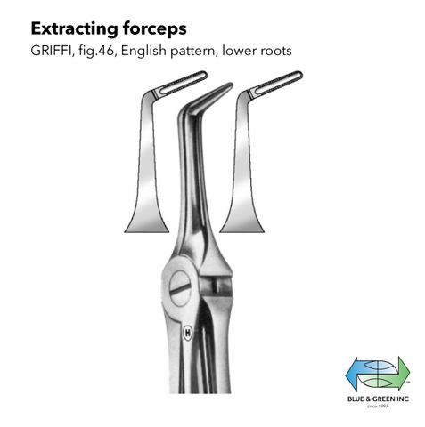 Root Extracting forceps lower (Z 154-46) Forceps - Blue & Green Inc.